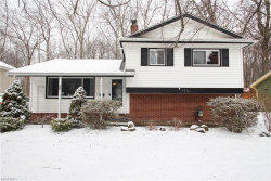 Photo of 6374 Brooks Blvd, Mentor, OH 44060 (MLS # 3980111)