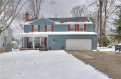 Photo of 1155 Brainard Rd, Lyndhurst, OH 44124 (MLS # 3980180)