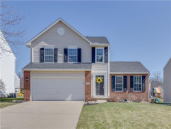 Photo of 4331 Eagle Ave, Stow, OH 44224 (MLS # 3980465)