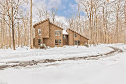 Photo of 17138 Wood Acre Trl, Chagrin Falls, OH 44023 (MLS # 3980609)