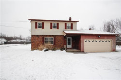 Photo of 7300 Allendale Dr, Mentor, OH 44060 (MLS # 3980803)