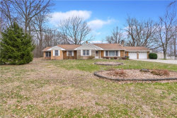 Photo of 11671 Green Beaver Rd, Canfield, OH 44406 (MLS # 3980812)