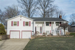 Photo of 4540 Deopham Green Dr, Austintown, OH 44515 (MLS # 3980931)