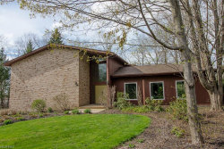 Photo of 9351 Canterbury Ln, Mentor, OH 44060 (MLS # 3982438)