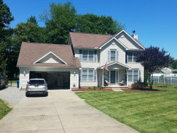 Photo of 217 Clingan Rd, Struthers, OH 44471 (MLS # 3983448)