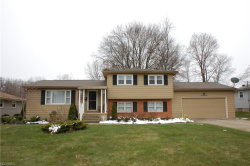 Photo of 1613 Rosehedge Dr, Boardman, OH 44514 (MLS # 3987567)