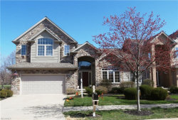 Photo of 461 Augustus Dr, Highland Heights, OH 44143 (MLS # 3987572)