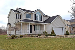 Photo of 10340 Carrousel Woods, New Middletown, OH 44442 (MLS # 3989103)
