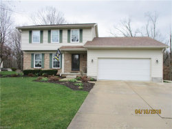 Photo of 3675 Meander Reserve Cir, Canfield, OH 44406 (MLS # 3989853)