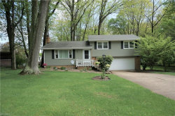 Photo of 8013 Paulin Dr, Poland, OH 44514 (MLS # 3990330)