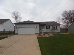 Photo of 3391 Forty Second St, Canfield, OH 44406 (MLS # 3990860)