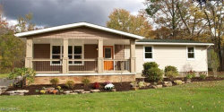 Photo of 9488 State Route 700, Windham, OH 44288 (MLS # 3993997)