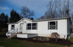 Photo of 2919 East South Range Rd, New Springfield, OH 44443 (MLS # 3994853)