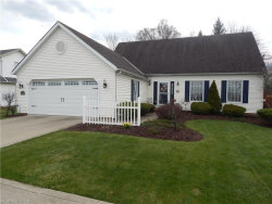 Photo of 10740 Ravenna Rd, Twinsburg, OH 44087 (MLS # 3995991)