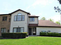 Photo of 7179 Village Dr, Mentor, OH 44060 (MLS # 4000072)