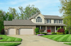 Photo of 7569 Manry Ct, Mentor, OH 44060 (MLS # 4000667)