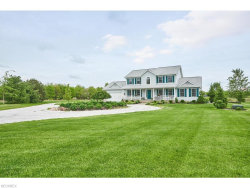 Photo of 7372 Smalley Rd, Freedom, OH 44288 (MLS # 4000706)