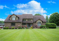 Photo of 4449 West Middletown Rd, Canfield, OH 44406 (MLS # 4004742)