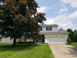 Photo of 8007 Forest Lake Dr, Boardman, OH 44512 (MLS # 4005026)