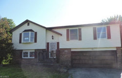Photo of 4824 Darbyshire Ct, Canfield, OH 44406 (MLS # 4006294)