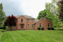 Photo of 8105 Leffingwell Ct, Canfield, OH 44406 (MLS # 4006636)