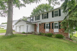Photo of 9963 Patton St, Twinsburg, OH 44087 (MLS # 4007925)