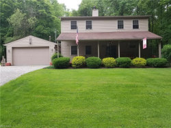 Photo of 2898 Dock Side Dr, Lake Milton, OH 44429 (MLS # 4007967)
