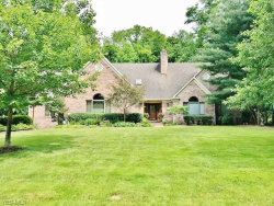 Photo of 7227 Yellow Creek Dr, Poland, OH 44514 (MLS # 4008298)