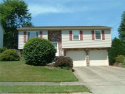Photo of 1852 Chapel Hill Dr, Youngstown, OH 44511 (MLS # 4009493)