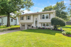 Photo of 4804 Pine Trace St, Austintown, OH 44515 (MLS # 4009651)