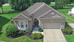 Photo of 7862 Rockdove Ln, Concord, OH 44077 (MLS # 4010778)
