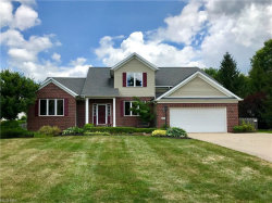Photo of 9365 Wallingford Dr, Twinsburg, OH 44087 (MLS # 4010952)