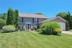 Photo of 1645 Kasserine Ct, Twinsburg, OH 44087 (MLS # 4012046)