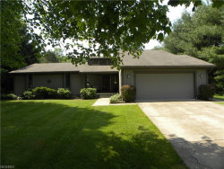 Photo of 3239 Paradise Ave, Canfield, OH 44406 (MLS # 4014282)