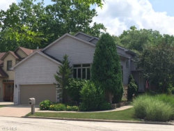 Photo of 50 Riverview Ct, Chagrin Falls, OH 44022 (MLS # 4014862)