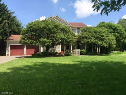 Photo of 7963 Columbiana Canfield Rd, Canfield, OH 44406 (MLS # 4015120)