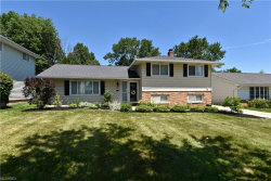 Photo of 6633 Monterey Dr, Mayfield Heights, OH 44124 (MLS # 4016769)