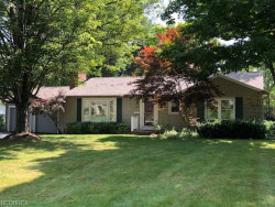 Photo of 181 Glenview Rd, Canfield, OH 44406 (MLS # 4017267)