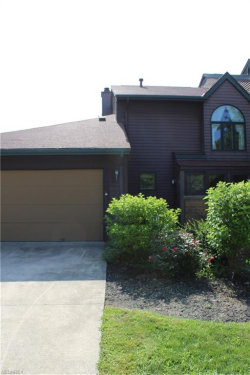 Photo of 117 Fox Hollow Ct, Unit 117, Mayfield Heights, OH 44124 (MLS # 4017508)