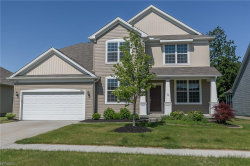 Photo of 8018 Amberley Dr, Mentor, OH 44060 (MLS # 4019225)