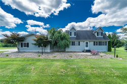Photo of 4584 Goodell Rd, Mantua, OH 44255 (MLS # 4019621)