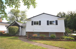 Photo of 1351 Giesse Dr, Mayfield Heights, OH 44124 (MLS # 4019863)