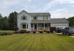 Photo of 6297 New Castle Rd, Lowellville, OH 44436 (MLS # 4021431)