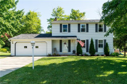 Photo of 10073 Patton St, Twinsburg, OH 44087 (MLS # 4022423)