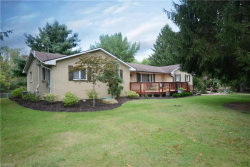 Photo of 3130 Paradise Ave, Canfield, OH 44406 (MLS # 4023163)