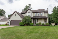 Photo of 884 Collins Pond Dr, Ravenna, OH 44266 (MLS # 4024616)