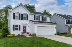Photo of 691 Arbor Trails Dr, Macedonia, OH 44056 (MLS # 4025349)