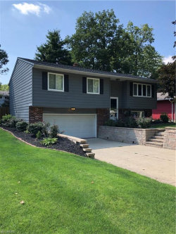 Photo of 6734 Duneden Ave, Solon, OH 44139 (MLS # 4026216)