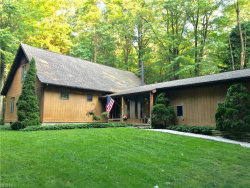 Photo of 4990 Skinner Rd, Mantua, OH 44255 (MLS # 4027297)