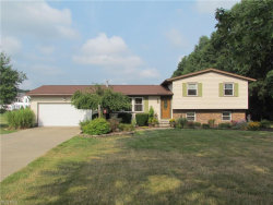 Photo of 4873 Industry Rd, Ravenna, OH 44266 (MLS # 4027712)